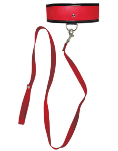 Color photo of the red collar and accompanying leash.