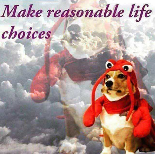 "Meme featuring a small brown and white dog sitting back on their hind legs, wearing a ludicrous lobster costume that goes over the top of their head and has claws hanging at their sides. They are photoshopped over a cloudy background with a much lower-opacity, enlarged version of themself over the clouds. The meme is captioned, ""Make reasonable life choices."""