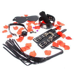 Toyjoy bondage kit with flogger, wrist cuffs, ball gag, nipple clamps, collar, leash, blindfold, and rope.